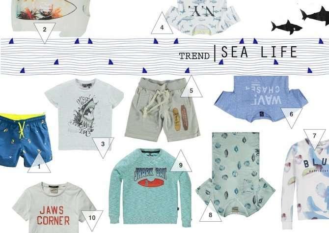 TREND | SEA LIFE