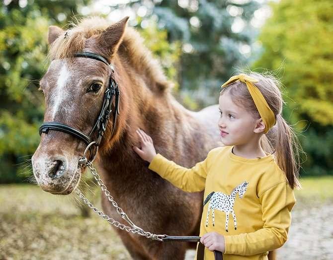 "ZIEN! NIEUWE COLLECTIE POCOPATO ""THE DOTTED HORSE"""
